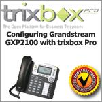 gxp2100_tbpro_thumb